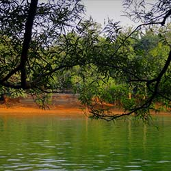 Nandankanan in Bhubaneswar