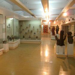 National Museum, Delhi in New Delhi