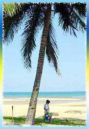 Nipah Beach in Perak