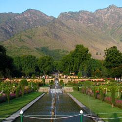 Nishat Garden in Srinagar