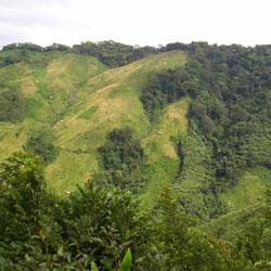 Nokrek Biosphere Reserve in Tura