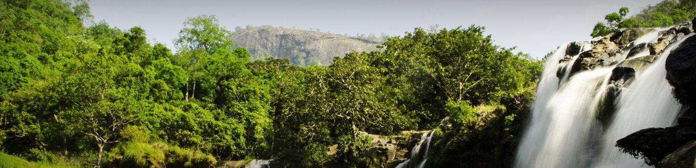 Nyayamakad Waterfall