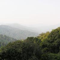 Nyungwe Forest National Park in Northwestern Rwanda