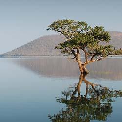 Pakhal Lake in Warangal