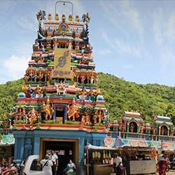 Pazhamudhir Solai in Madurai