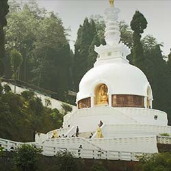 Peace Pagoda, Darjeeling in Darjeeling