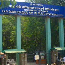 Rajiv Gandhi Zoological Park in Pune