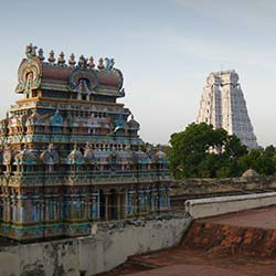 Ranganathaswamy Temple in Trichy