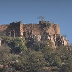 Ranthambore Fort in Ranthambore