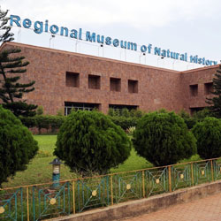 Regional Museum of Natural History in Mysore
