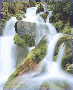 Rengthiam Falls in Shillong
