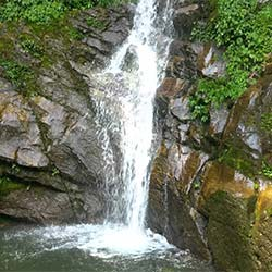 Rimbi Waterfalls in Pelling