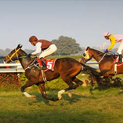 Royal Calcutta Turf Club in Kolkata