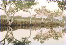 Rudall River National Park in Pilbara
