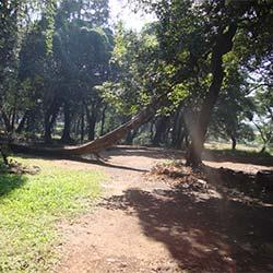 Ryewood Park in Lonavala