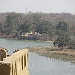 Sakhya Sagar Lake in Shivpuri