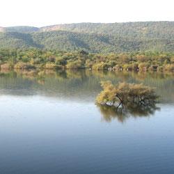 Sariska Wildlife Sanctuary in Alwar
