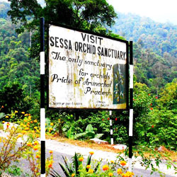 Sessa Orchid Sanctuary in Kameng