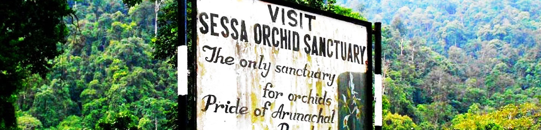 Sessa Orchid Sanctuary