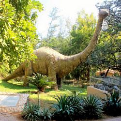 Shivalik Fossil Park in Sirmaur
