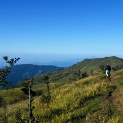 Singalila National Park in Darjeeling