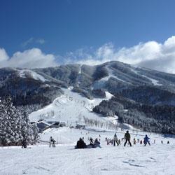 Skiing in Manali in Manali