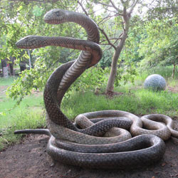 Snake Park in Chennai
