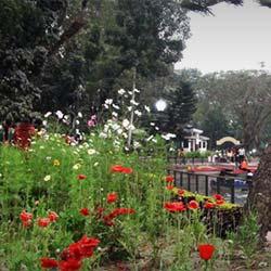 Surya Sen Park in Siliguri
