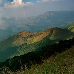 Tadiandamol Peak in Kodagu
