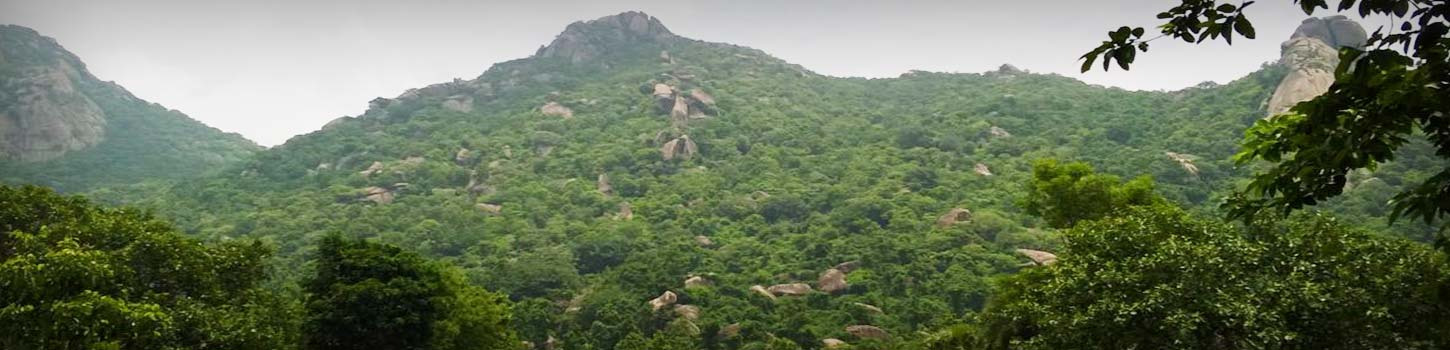 Tapovan Caves and Hills