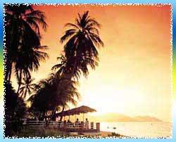 Teluk Bahang Beach in Penang