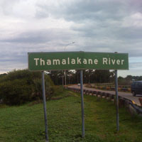 Thamalakane River in