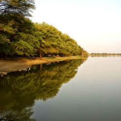 Thol Wildlife Sanctuary in Mehsana
