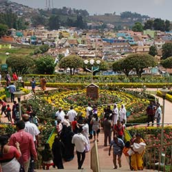 Thread Garden in Ooty