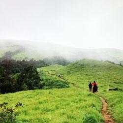 Jungle Trekking in  Shimoga in Shimoga