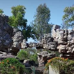 TTD Gardens in Tirupati