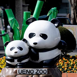 Ueno Zoo in Tokyo