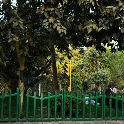Urdu Park in New Delhi