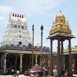 Varadaraja Temple in Kanchipuram
