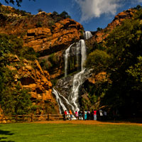 Walter Sisulu National Botanical Gardens in Gauteng