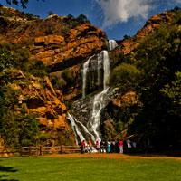 Walter Sisulu National Botanical Gardens in Gauteng
