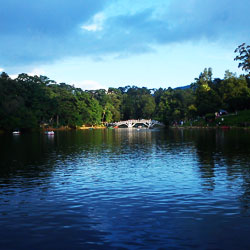 Ward Lake in Shillong