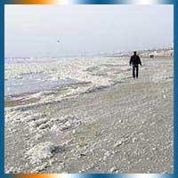 Zandvoort Beach in Zandvoort