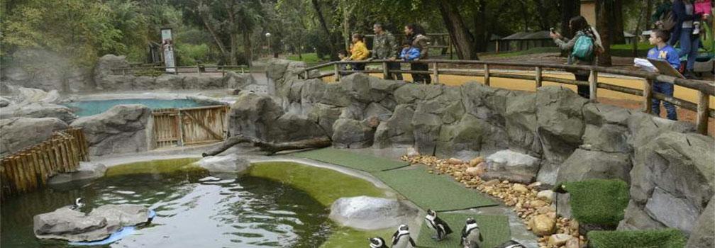 Zoological Garden
