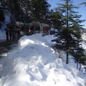 Chandigarh - Shimla - Manali - Dharamshala - Dalhousie Package Tour 10 Nights & 11 Days