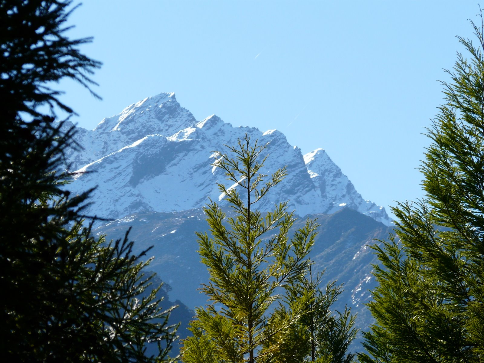 Glimpse Of Eastern Himalayas Tour