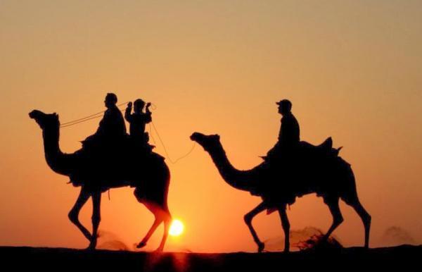 Camel Safari (Rao Bikaji ) Tour
