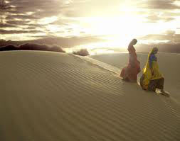 Special Rajasthan Holiday Tour