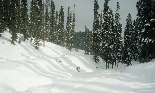 Winter Kashmir Package