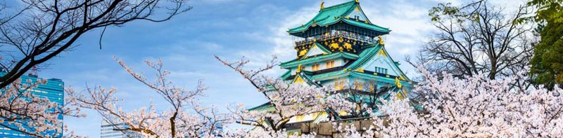 Summer Super Value Splendors Of Japan Tour